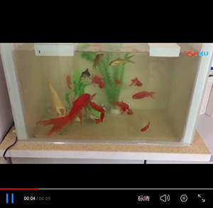 有釉面发泡陶瓷保温板防水鱼缸